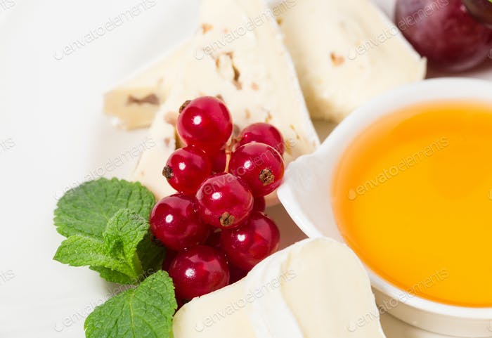 Cheese platter with red currant and honey.