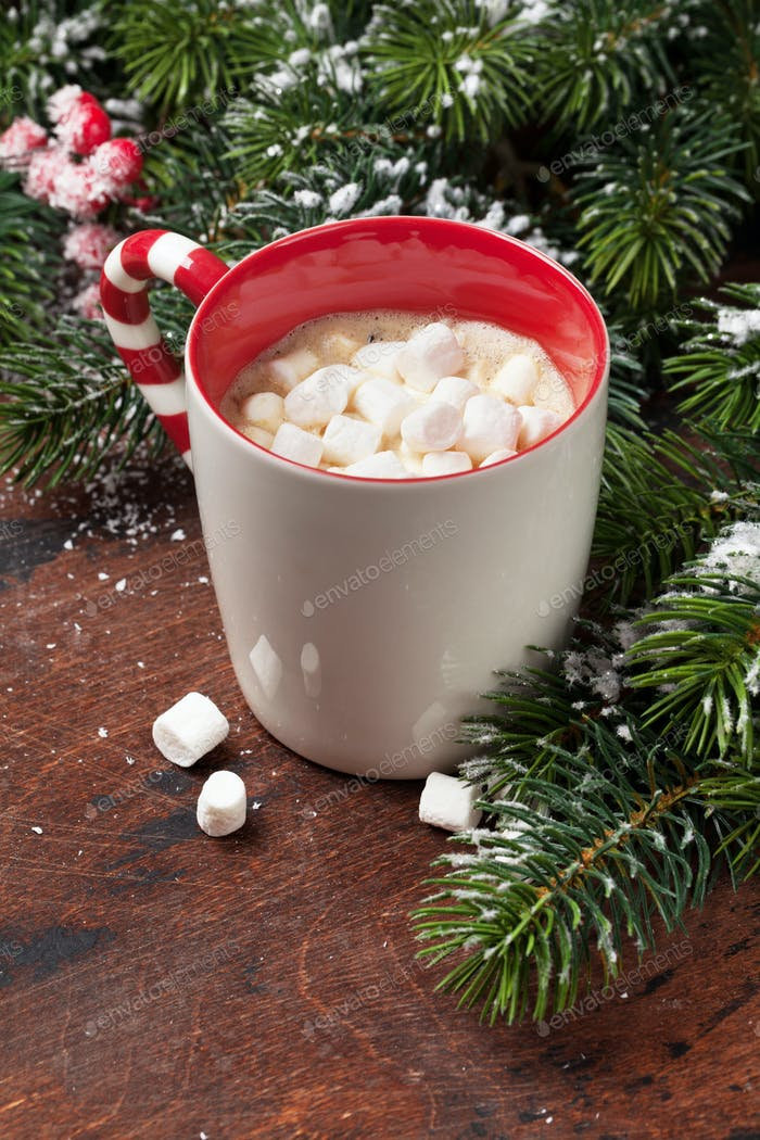 Christmas fir tree and hot chocolate with marshmallow