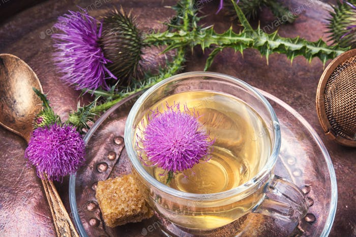 healthy tea with thistle