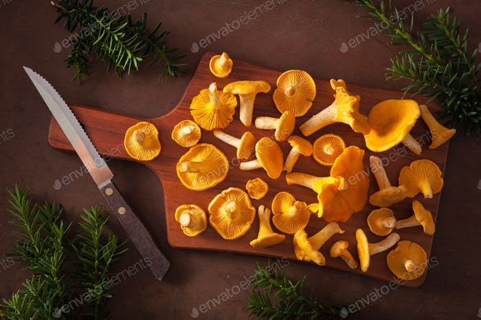 raw fresh chanterelle mushrooms flat lay on dark background