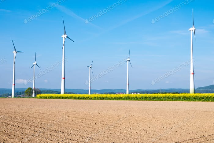 Barren field and windwheels