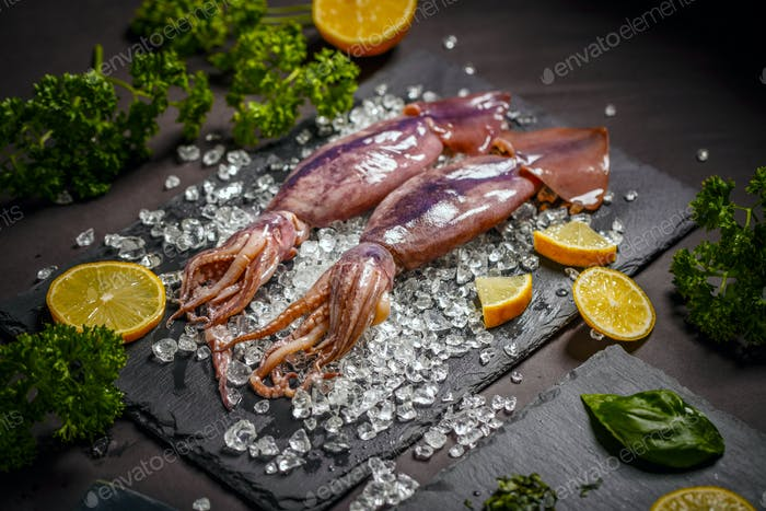 Fresh squid