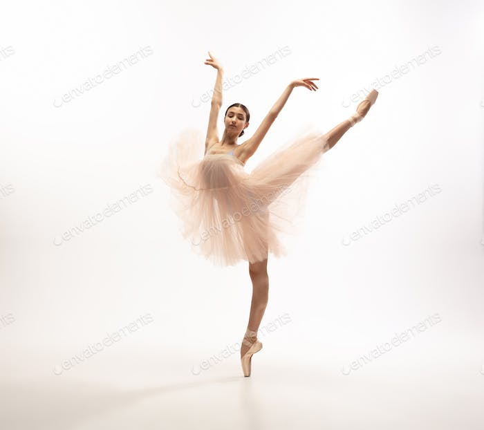Young graceful tender ballerina on white studio background