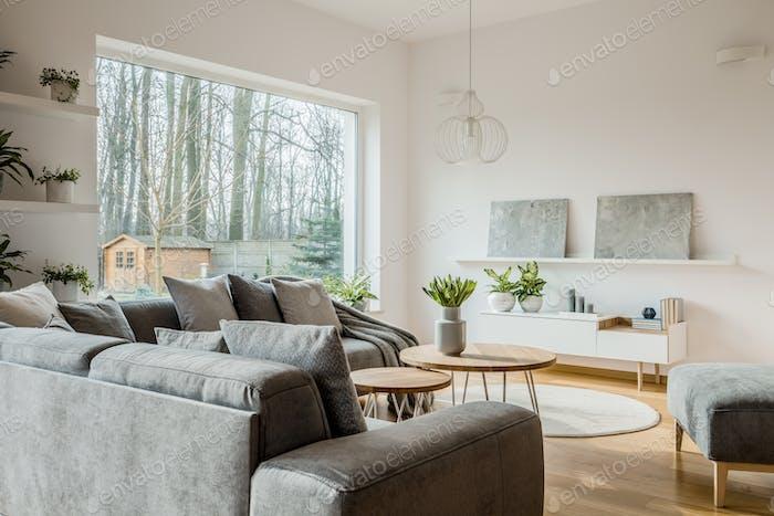 Modern grey living room interior