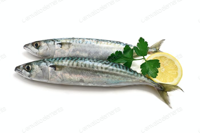 two mackerel with lemon