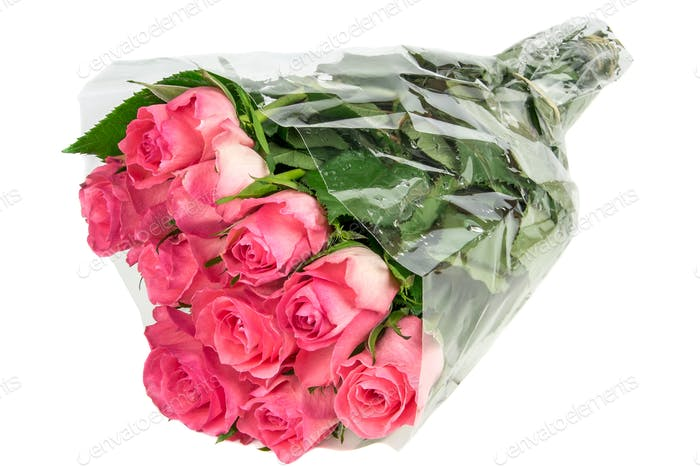 Pink Roses in Foil