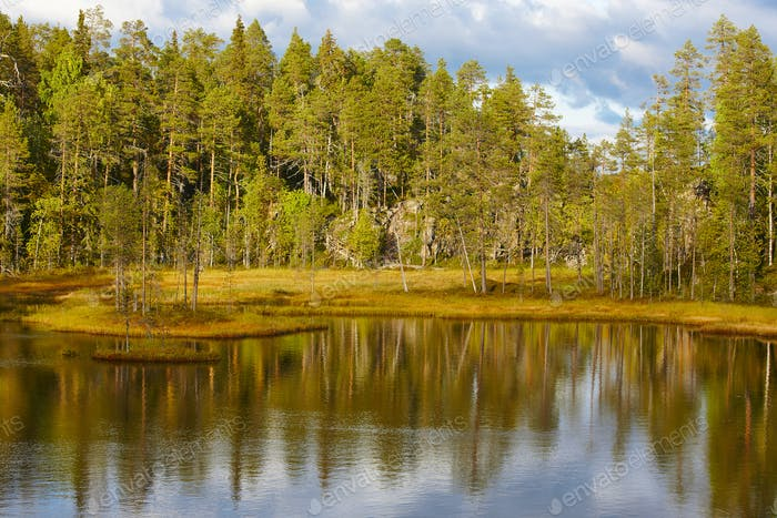 Finland forest and lake at Pieni Karhunkierros trail. Autumn season
