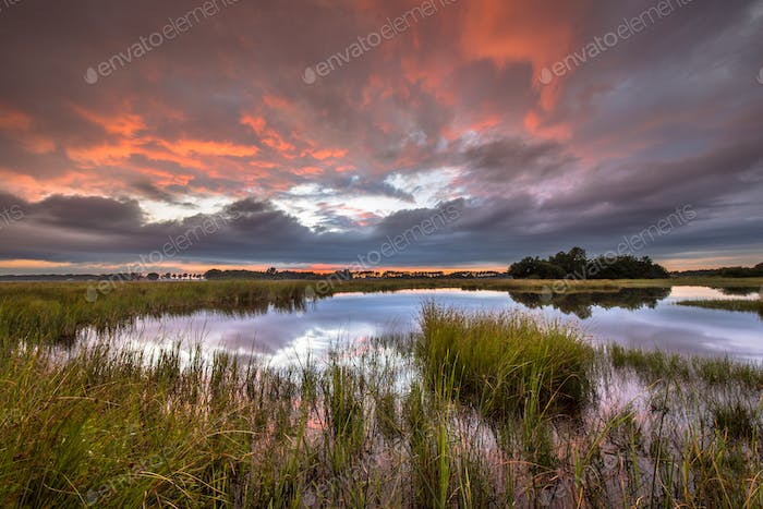 Dramatic sunset over marshland in natural landscape
