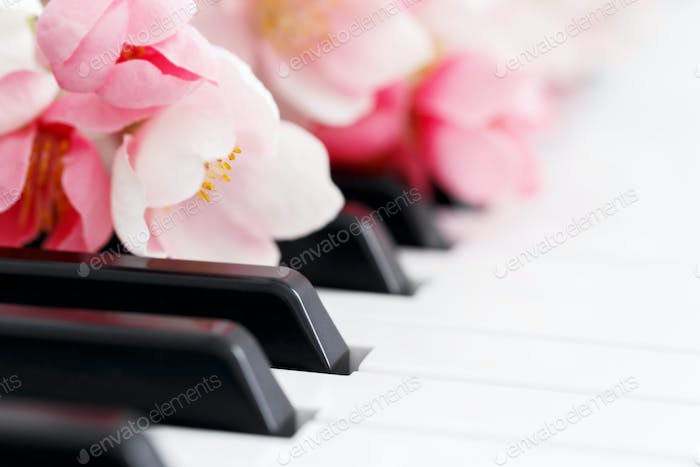 Piano and flowers close up