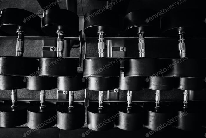 many weights in gym monochrome