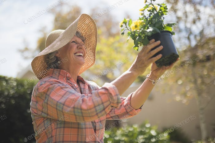 Low angle view of happy senior woman holding potted plant
