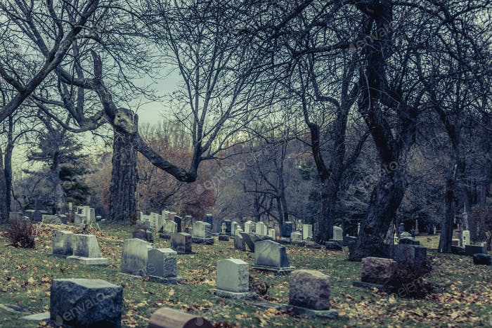 Thumbnail for Back of Gravestones in a Old Cemetery in Autumn