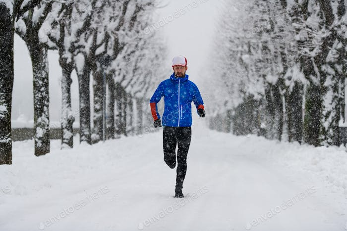 Tree lined avenue full of snow with a runner