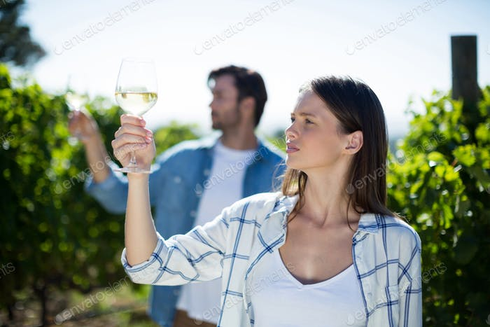 Young couple with wineglasses at vineyard