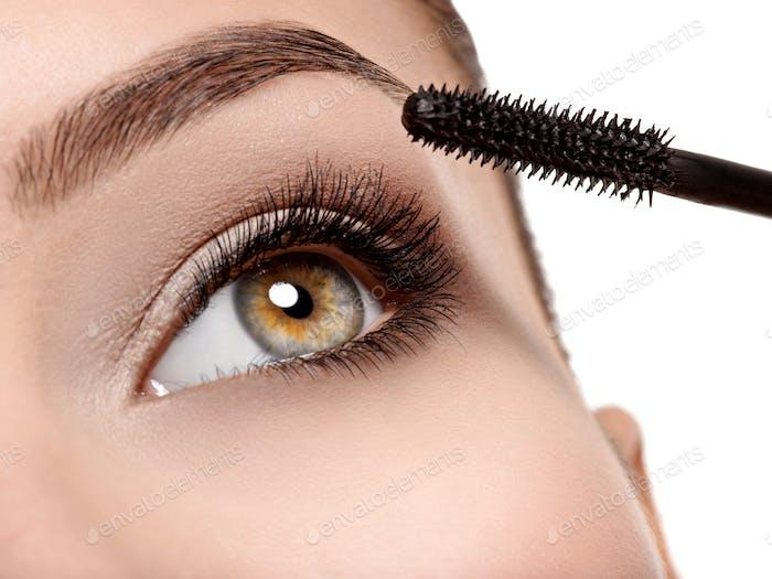 Frauen Auge mit langen schwarzen Wimpern und Make-up-Pinsel
