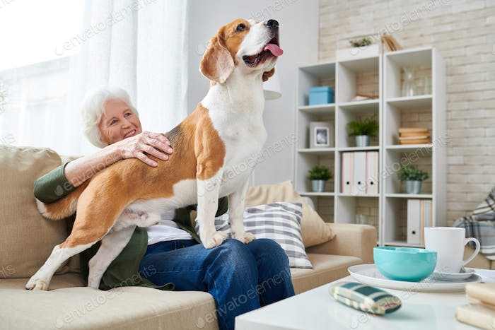 Happy Senior Woman with Beagle Dog