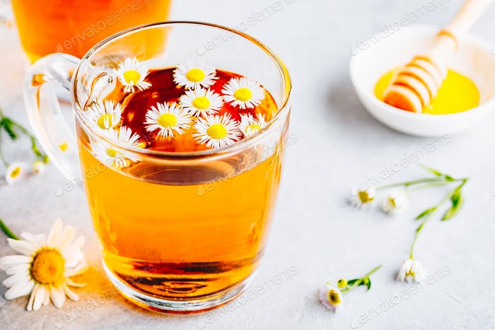 Healthy herbal tea with fresh chamomile flowers in glass cup