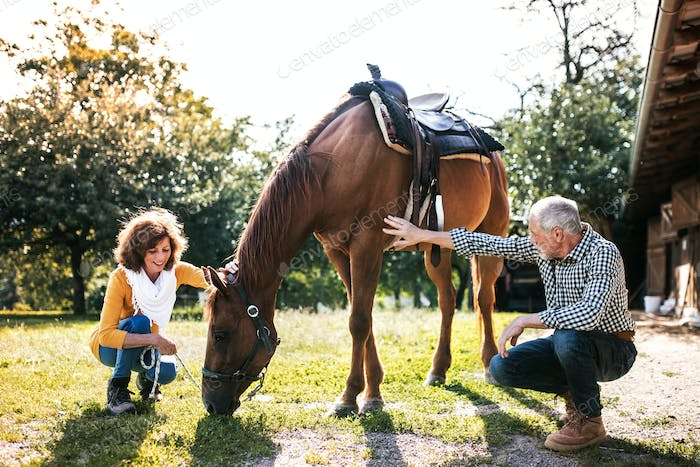 A senior couple crouching and a horse grazing by a stable.