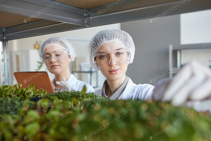 Two Female Scientists in Bio Lab