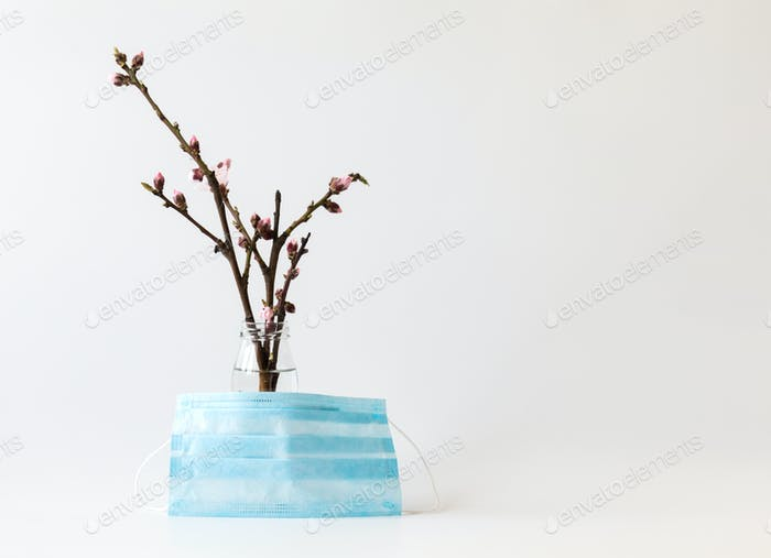 Flowering peach branch and medical mask. Concept of protection against seasonal allergies  virus.