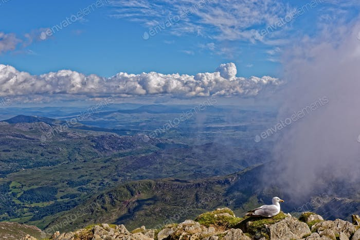 Top of Mount Snowdon