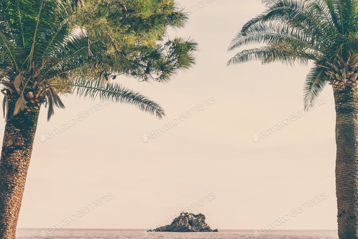 Palmtrees on the shore and beach in Petrovac