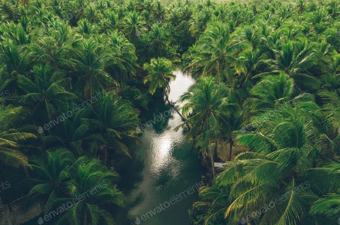 tropical travel in the philippines