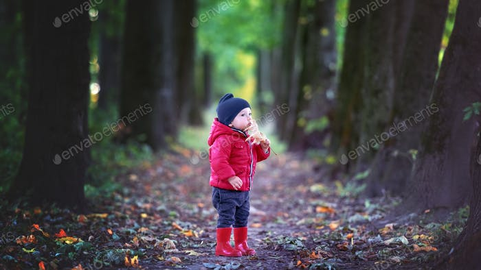 Little toddler boy in red rubber boots
