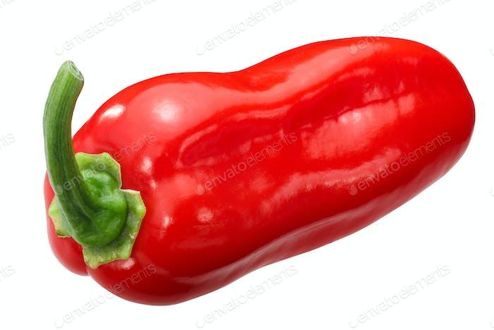 Zavory habanero pepper c.chinense, paths