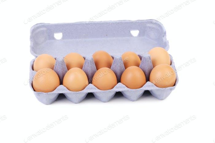 Ten eggs in a blue carton box