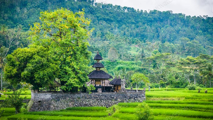 An Temple between Lush Green of Rice tarrace in Sidemen, Bali, Indonesia