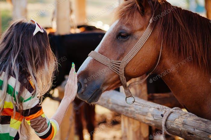 woman pets horse