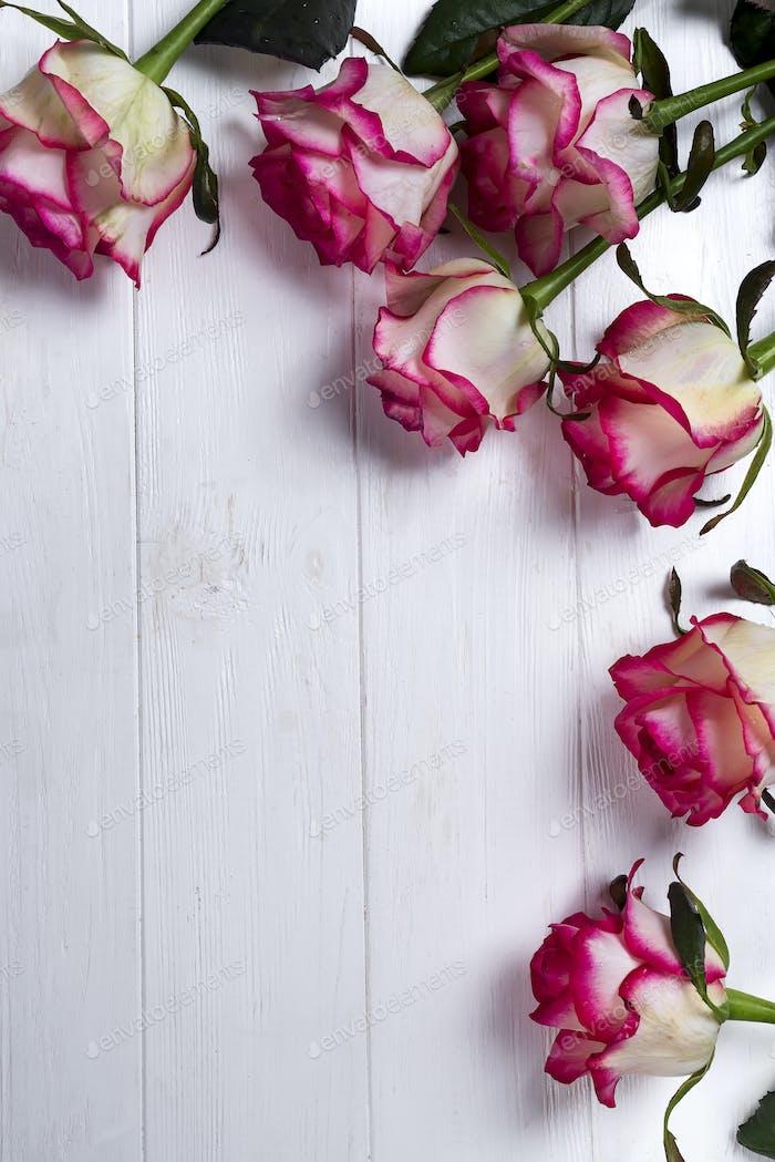 Roses frame on wooden white background