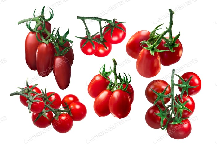 Italian tomatoes in clusters, paths