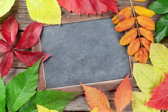 Autumn chalkboard and leaves
