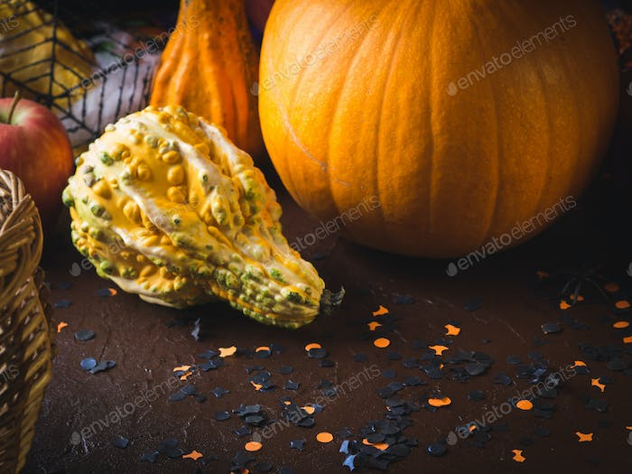 Halloween still life background with squash
