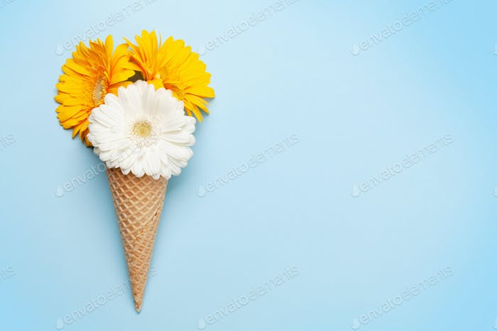 Colorful gerbera flowers in ice cream waffle cone