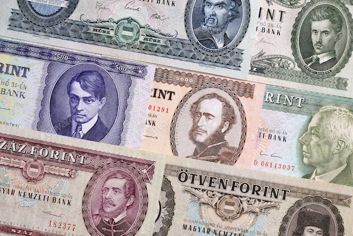 Hungarian Forint, a background