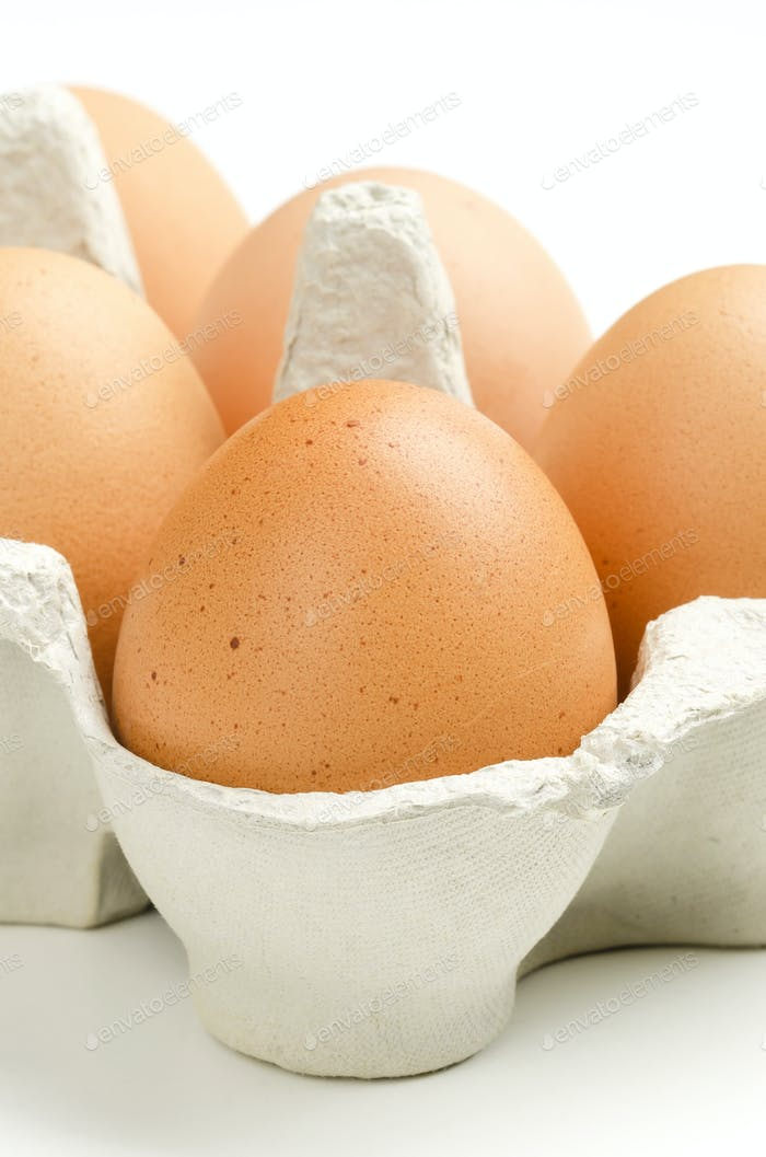 Thumbnail for Chicken eggs in gray egg carton, front view