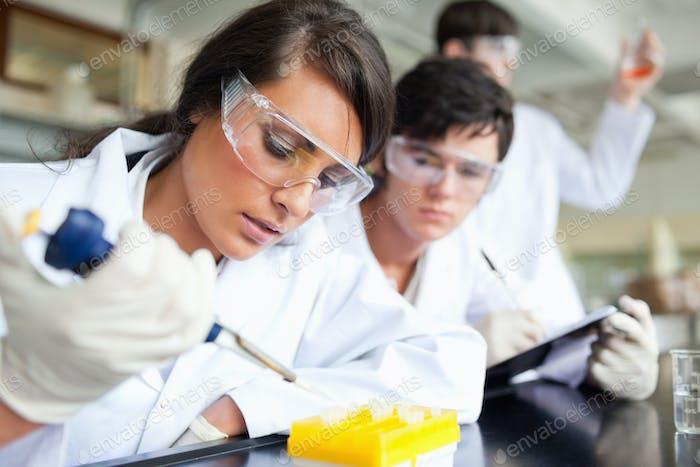 Drei Wissenschaftler arbeiten