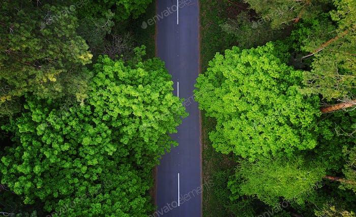 Straße durch den Wald, Luftbild