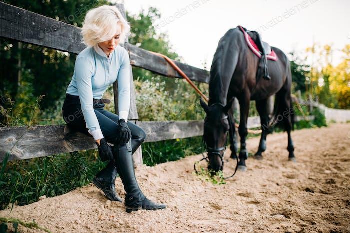 Woman and brown stallion, horseback riding