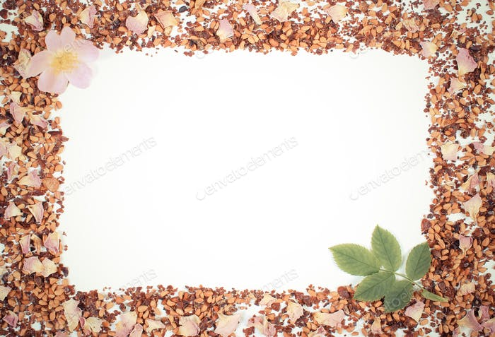 Vintage photo, Frame of tea grains, dried wild rose petals and fresh flower, copy space for text