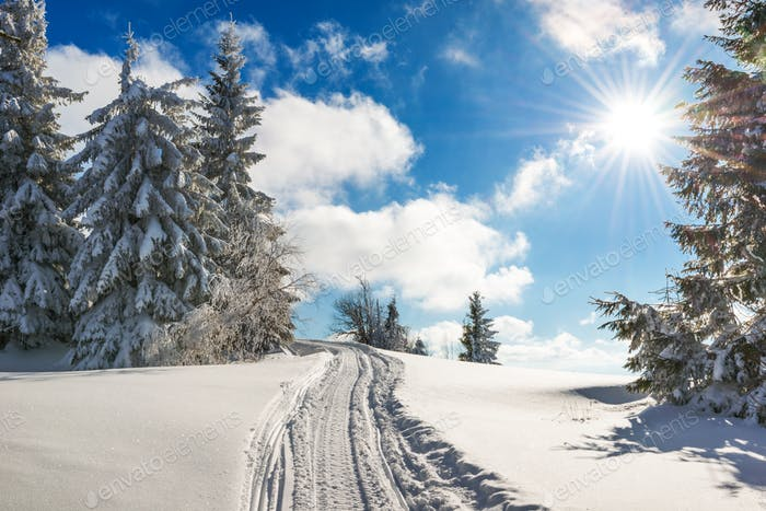 Stunning and picturesque winter landscape