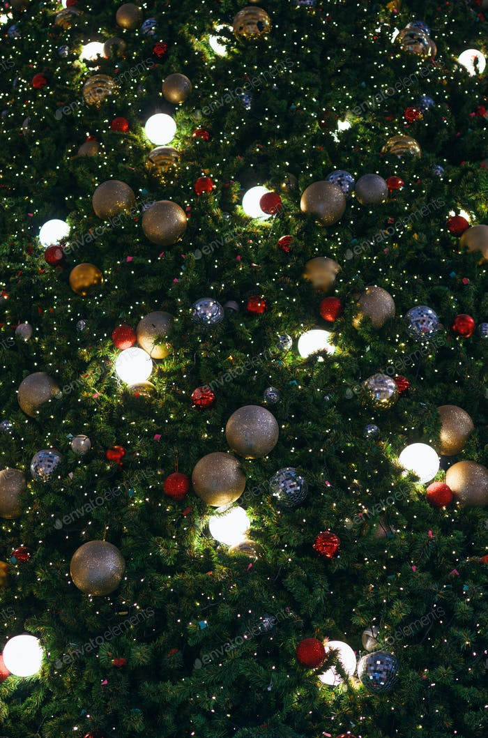 The ornament decoration christmas tree