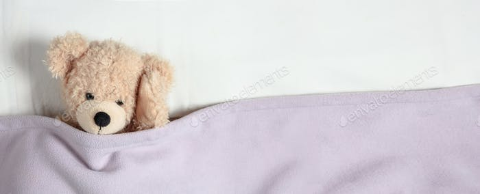 Headache, insomnia. Cute teddy in bed, holding his head, banner, copy space