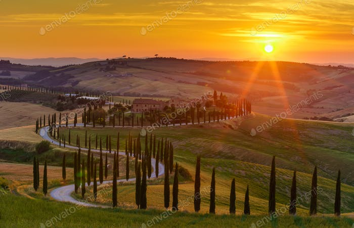 Sunset over the rolling hills, green fields, cypresses trees and winding road in Tuscany, Italy