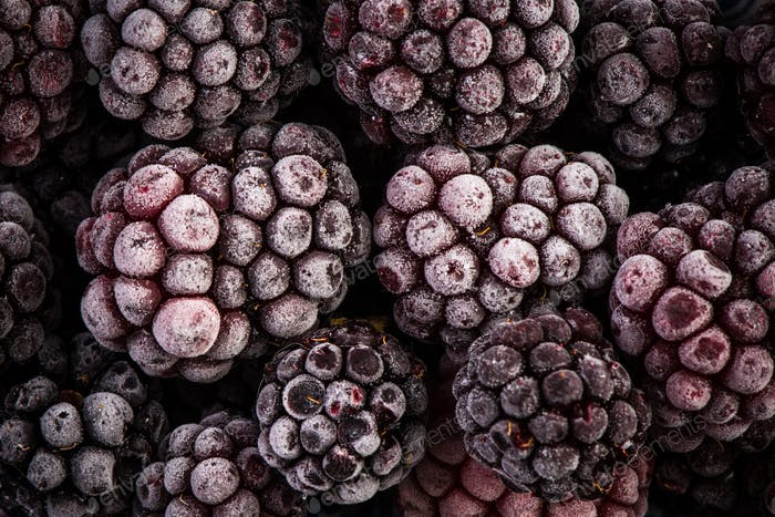 Frozen blackberry fruits, close up