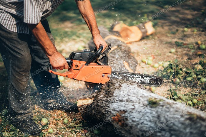 Adult man cutting trees with chainsaw and tools