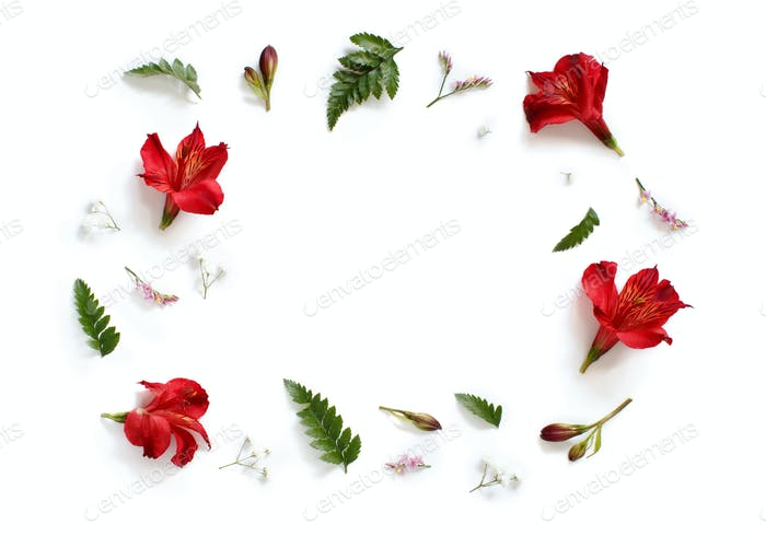 Blumen und Blätter auf weißem Hintergrund